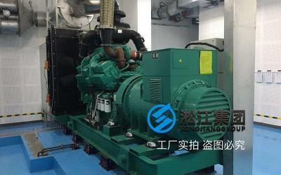 ZTF阻尼弹簧减振器大型柴油发电机安装实例