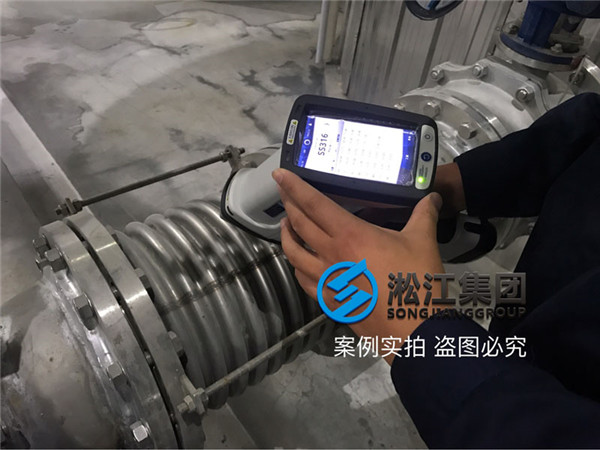 On-site detection of DN200 ripple compensator PN16 316L