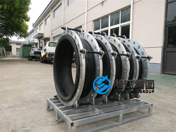 Large Diameter DN700 Rubber Soft Joint to a Waterworks
