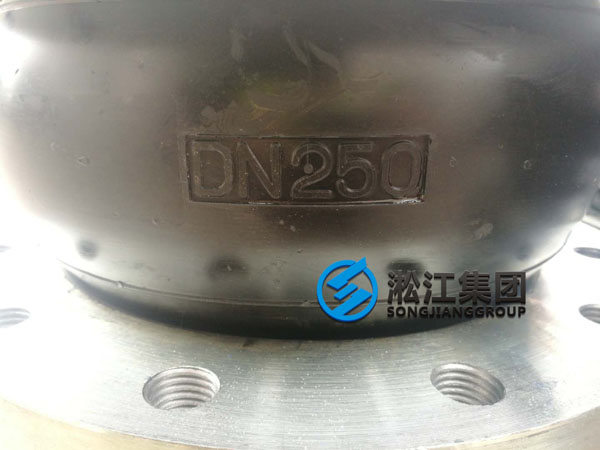 DN250 Fluororubber Soft Joint Delivered to Fuqing City Site