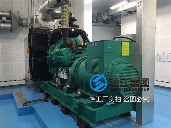 Installation Example of Large Diesel Generator with ZTF Damping Spring Damper